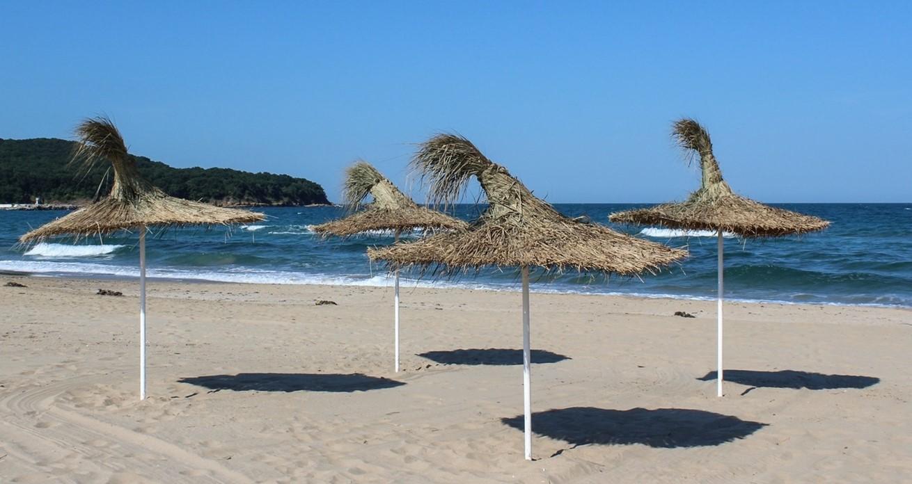 Beach Landscape Sea Coast Tree Water 1185643 Pxherecom