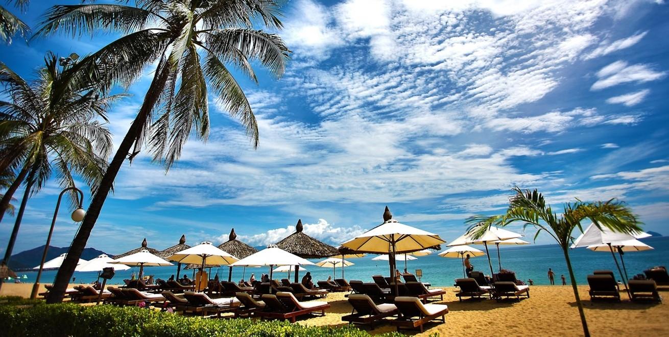 Man Beach Sea Coast Tree Water 457958 Pxherecom