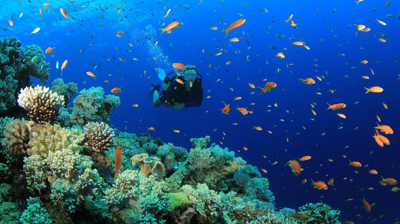 Scuba Diving Oludeniz Turkey