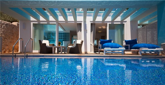 Deluxe Private Pool Rooms 15