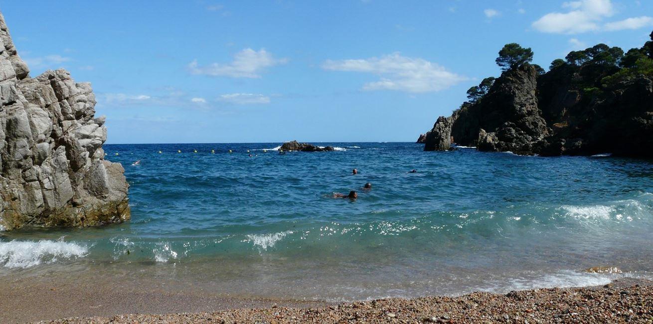 Beach Sea Coast Water Sand Rock 1154638 Pxherecom