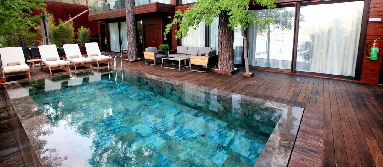 Executive Villa Pool 2