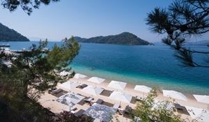Beach D Resort