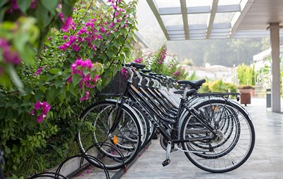 Bicycle Hire D Resort Image