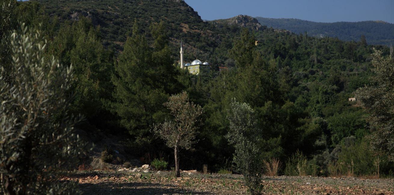 Mosque in Islamlar