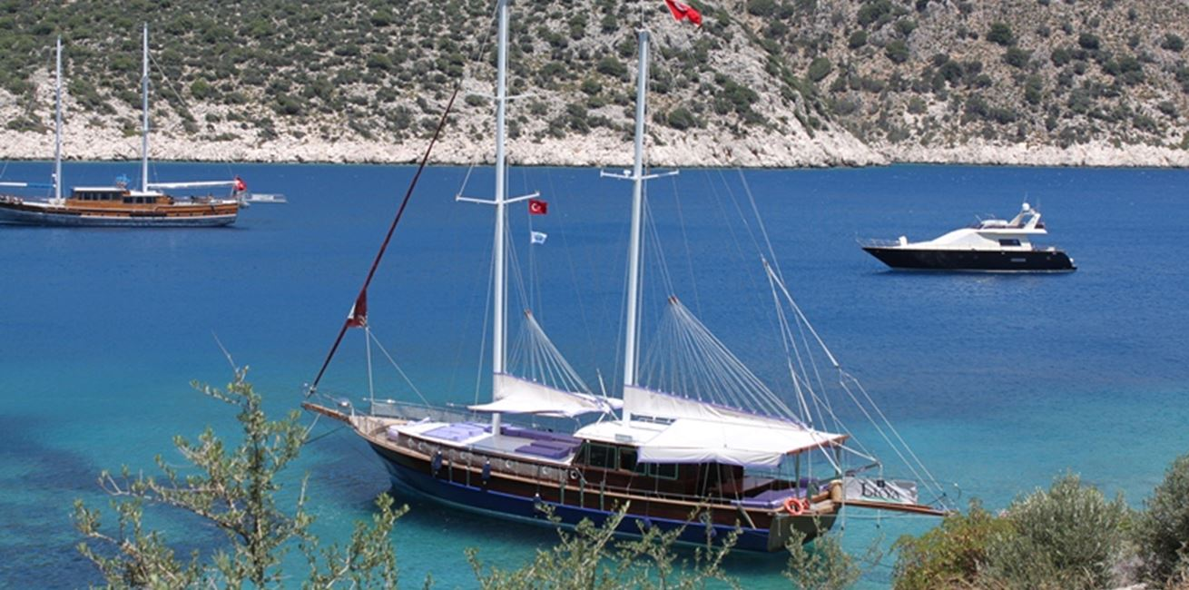 Arrange a private day trip on the Emir Gulet