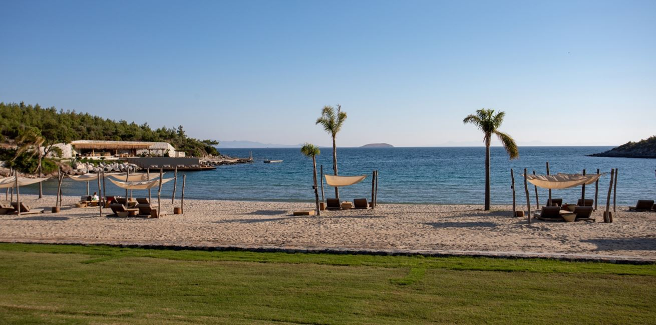 Anhinga Beach3 7771 A4
