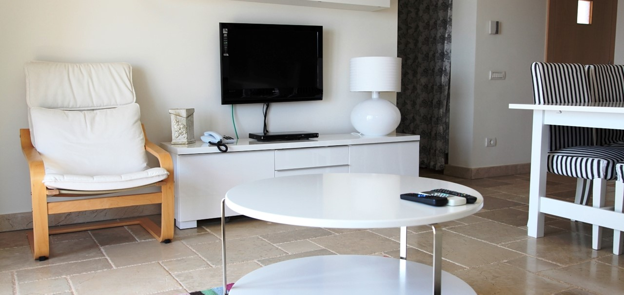 Contemporary lounge area with flat screen TV
