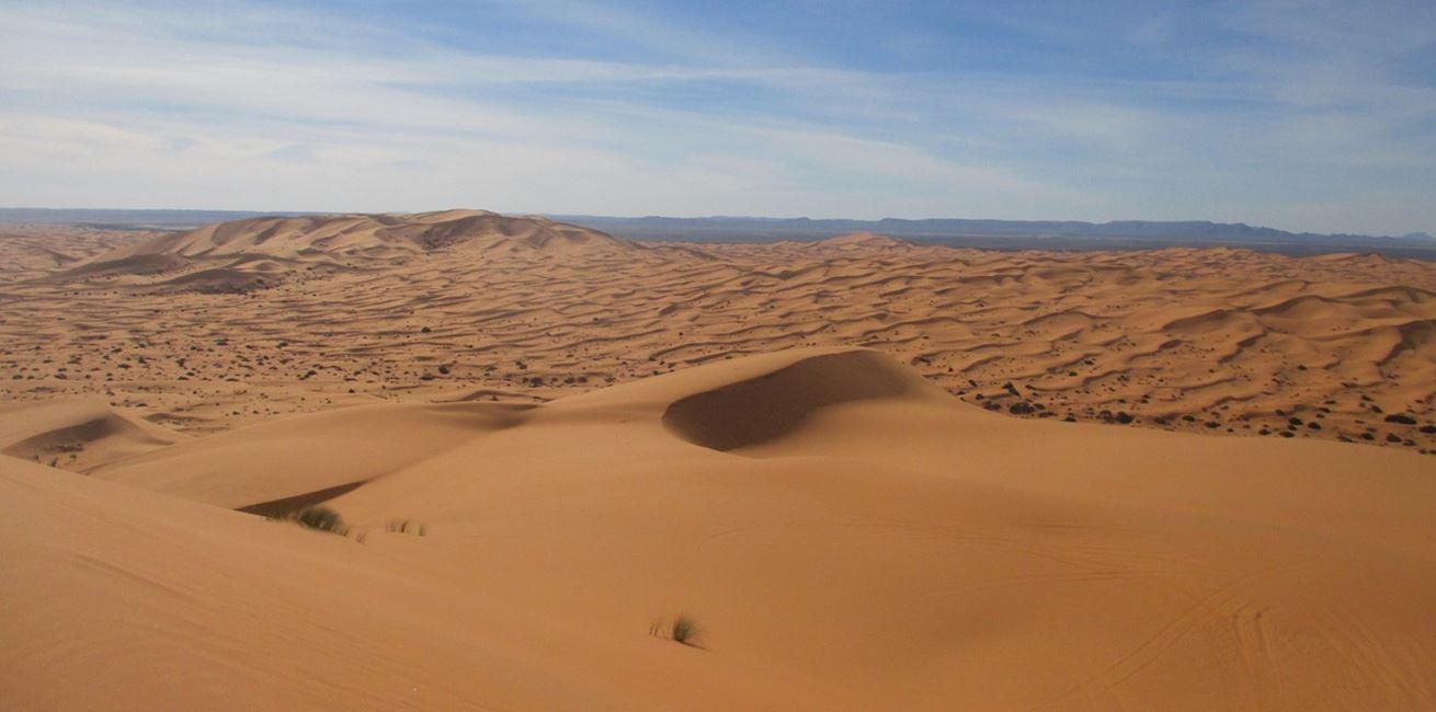 Landscape Sand Desert Dune Silence Grassland 814563 Pxherecom 1