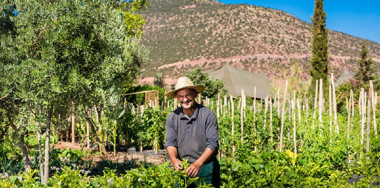 Gardener Kasbah Tamadot