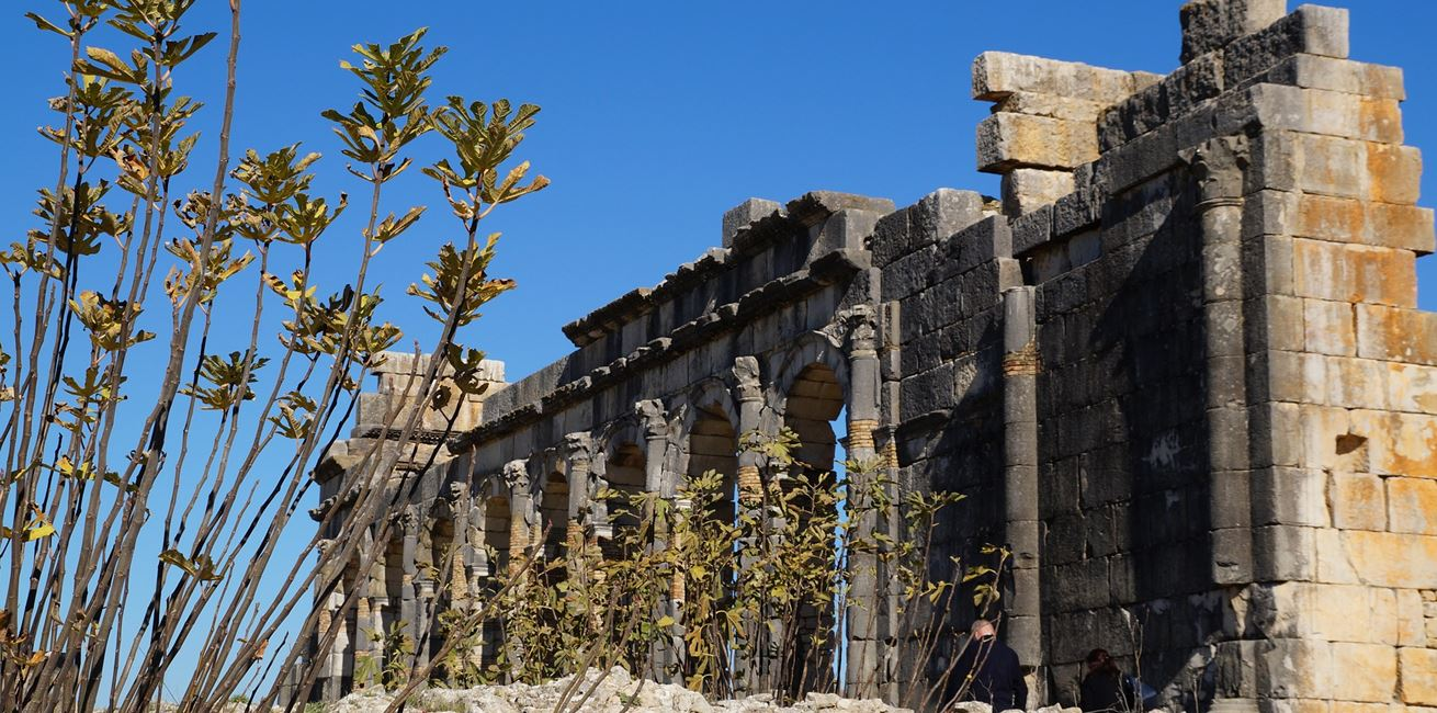 Volubilis Pixabay Ruins 1005539 1920