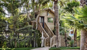 Tree House Suite